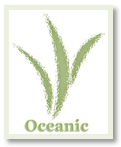 Oceanic Liquid Seaweed Fertilizer